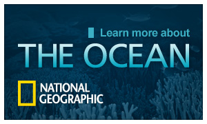 The Ocean - National Geographic