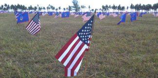 Memorial_Day_2014_flags_at_Asan_640